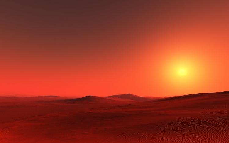 【图片分享计划】饿了的狮王_985 太阳 沙漠